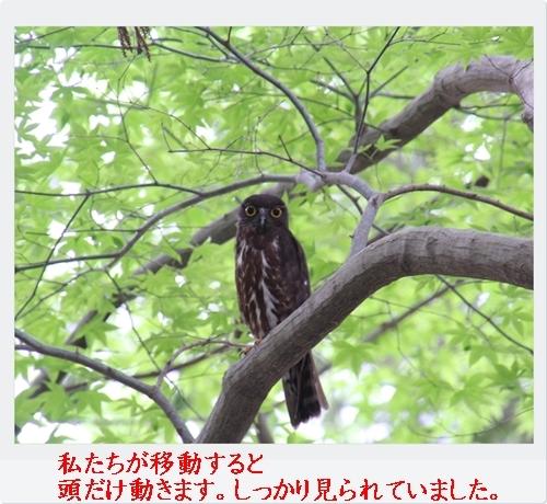 Photo_20190702221201
